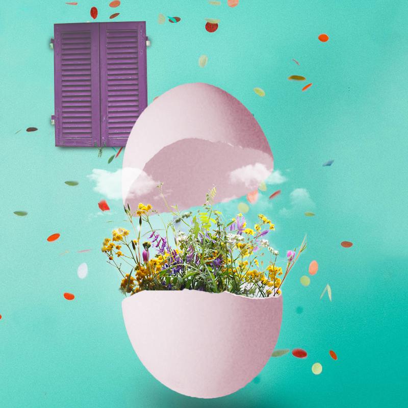 photomontage-photoshop-egg
